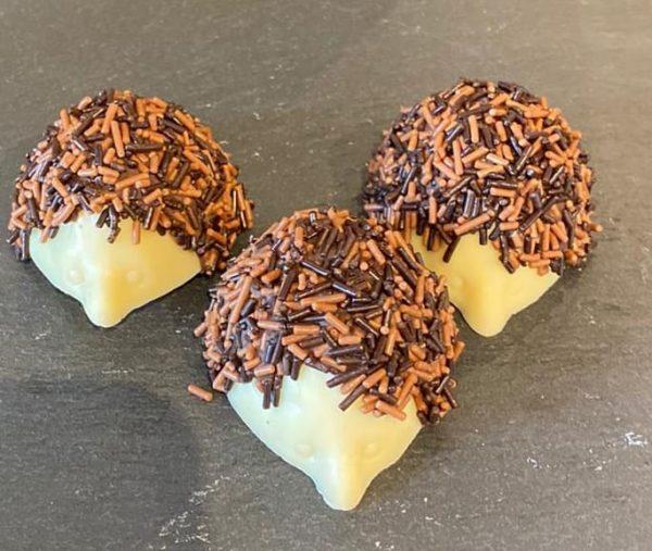 egeltjes-bonbons-van-melkchocolade-met-hagelslag